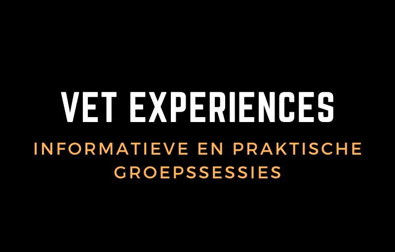 vet-experiences
